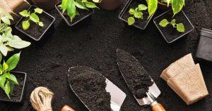 Garden equipment, herbs, and dirt